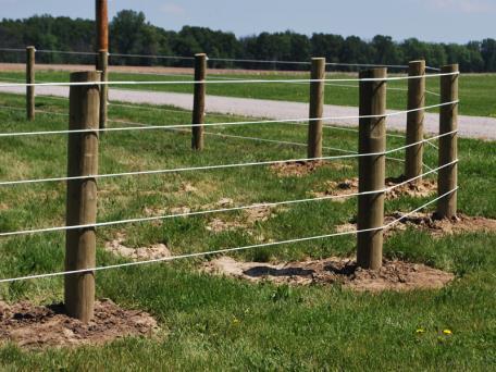 Flex Fence® Raceline Coated Wire Photo Gallery