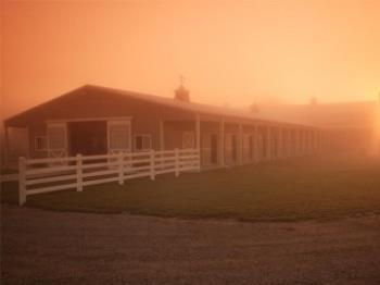 Finding the Right Help for Your Barn