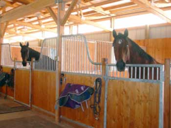From Boarding to Your Barn