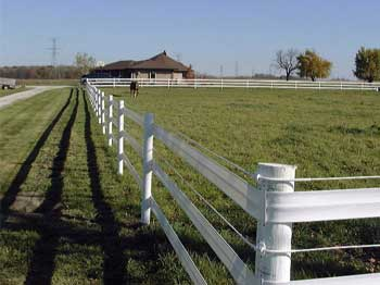 Tina-F-Other-Images-Flex-Fence.jpg