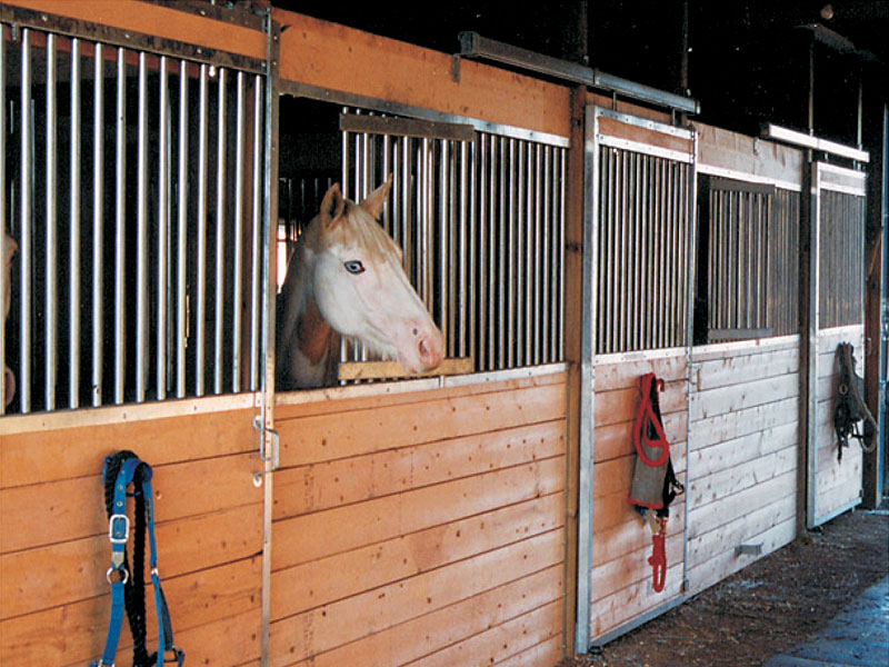 Related keywords suggestions for horse stall kits for Horse barn materials