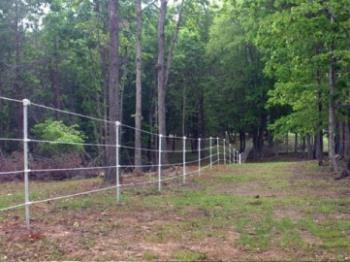 Electric Fencing Ideas That Will Work And Will Fit Your Budget